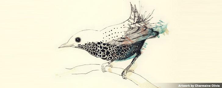 Artwork by Charmaine Olivia